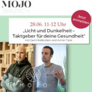 mojo institut webinar zu licht und performance